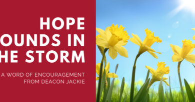 Hope Abounds in the Storm